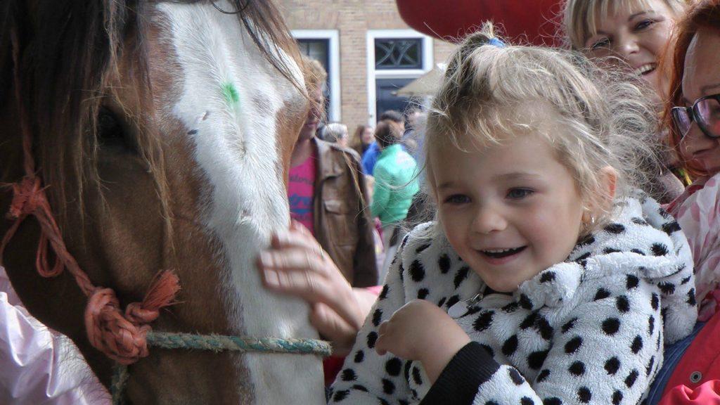 Paardenmarkt Heenvliet